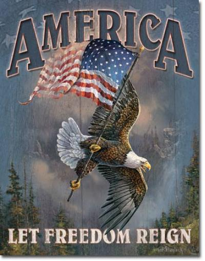Tin Sign, America - Let Freedom Reign