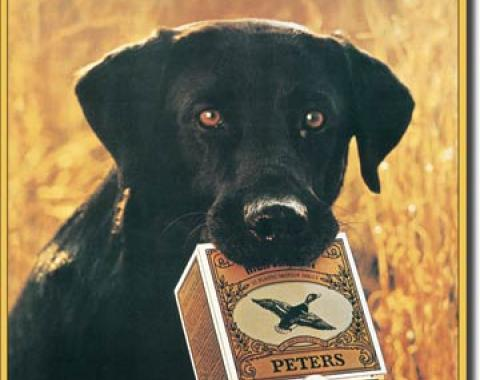 Tin Sign, Peters - True Blue Lab