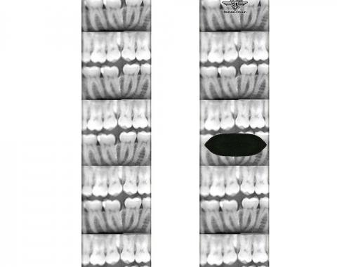 Sock Pair - Polyester - Dental X-Rays Black/White - CREW