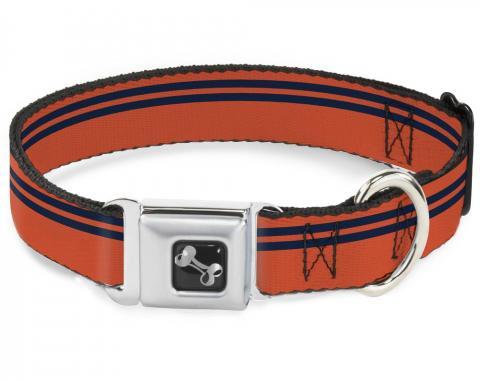Buckle-Down Seatbelt Buckle Dog Collar - Racing Stripe Orange/Navy