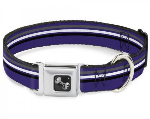Buckle-Down Seatbelt Buckle Dog Collar - Racing Stripes Purple/Gray/White/Black