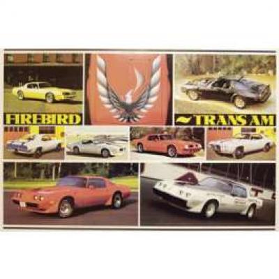 Firebird, Trans-AM History Poster